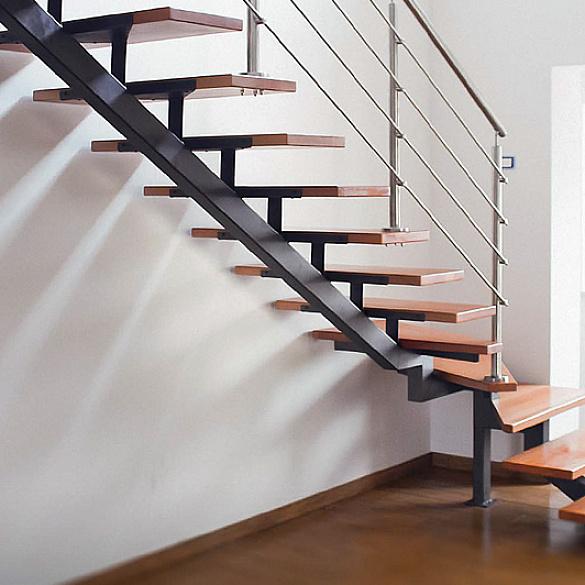 винокуров все фото лестниц на одном металлическом косоуре лотоса орехоносного розоватые